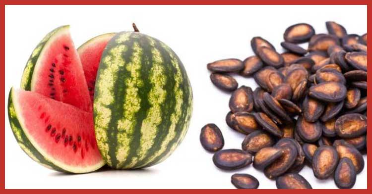 aceite de semilla de sandía